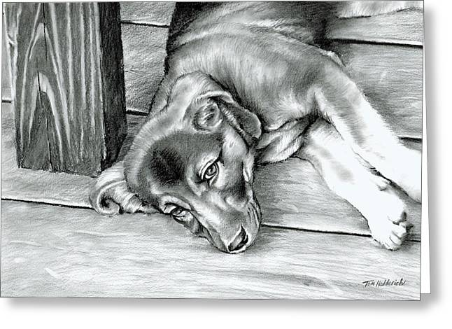 Charcoal Dog Drawing Drawings Greeting Cards - Molly Greeting Card by Tom Hedderich