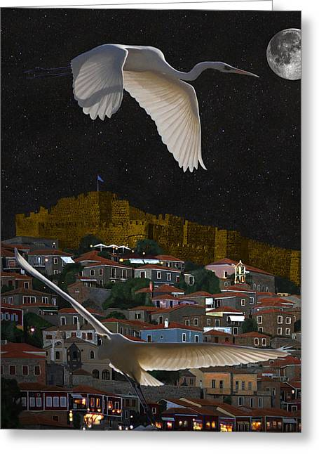 Greek Sculpture Mixed Media Greeting Cards - Molyvos Lesvos Egrets by moonlight Greeting Card by Eric Kempson