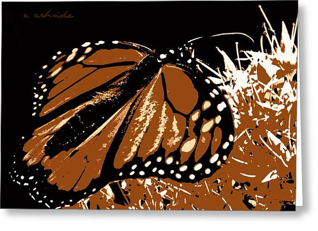 Patterned Marking Greeting Cards - Monarch Illustration Greeting Card by Chris Berry
