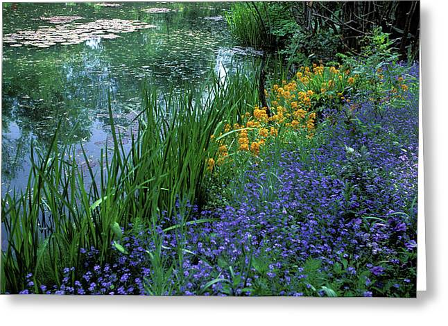 Flowers Framed Prints Greeting Cards - Monets Lily Pond Greeting Card by Kathy Yates