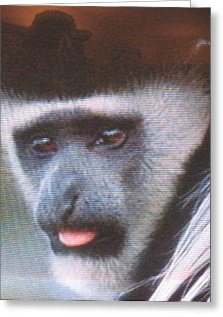 Humanlike Greeting Cards - Monkey Face One Greeting Card by Toni Roberts