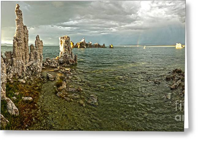 Gregory Dyer Greeting Cards - Mono Lake - 08 Greeting Card by Gregory Dyer