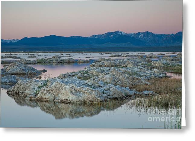 Alkaline Greeting Cards - Mono Lake Tufas Greeting Card by Olivier Steiner