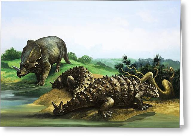 Blue Sky And Sand Greeting Cards - Monoclonius and Scolosaurus Greeting Card by English School