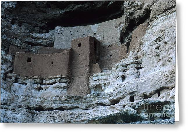 Early American Dwellings Greeting Cards - Montezumas Castle Greeting Card by Bob Christopher