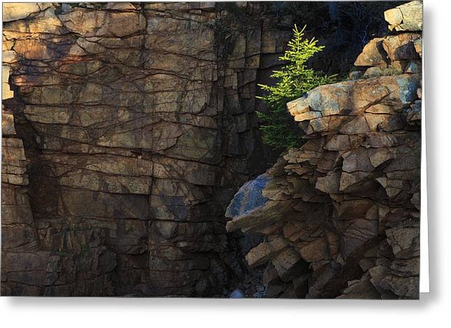 Maine Photographs Greeting Cards - Monument Cove I Greeting Card by Rick Berk