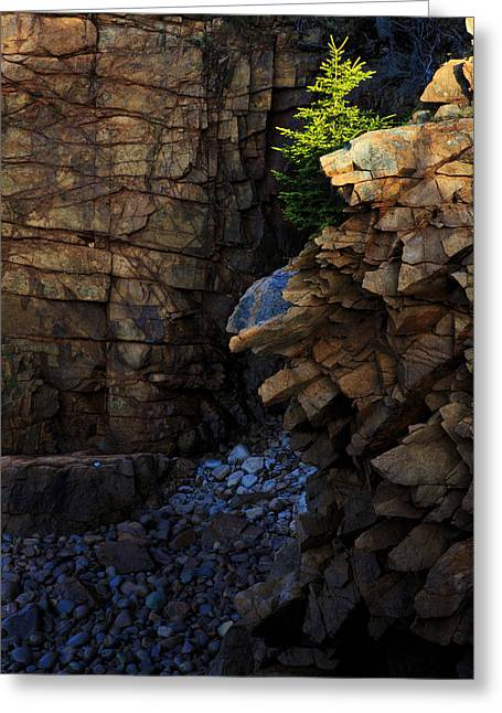 Maine Photographs Greeting Cards - Monument Cove II Greeting Card by Rick Berk