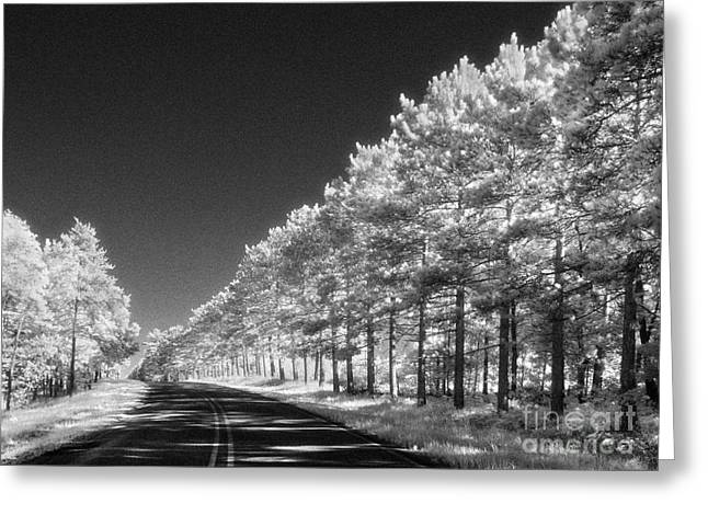 Jeff Holbrook Greeting Cards - Monument Road Greeting Card by Jeff Holbrook