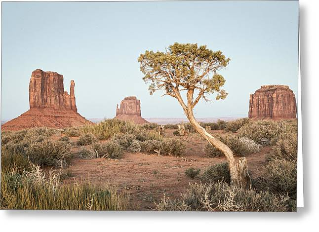 Monument Pyrography Greeting Cards - Monument Valley Greeting Card by Will Edwards