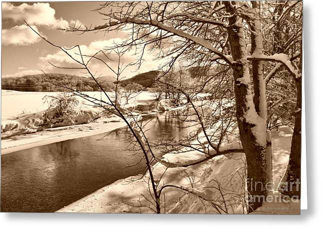 Snow Tree Prints Greeting Cards - Mood Of Winter Greeting Card by Deborah Benoit