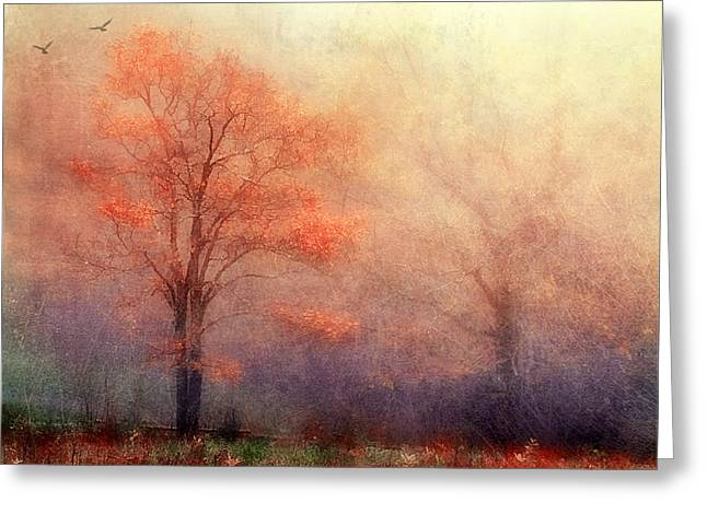 Moods Of Autumn Greeting Card by Darren Fisher