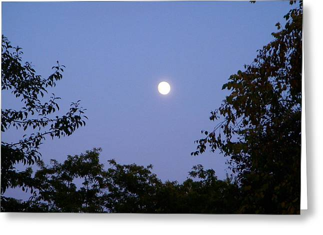 Moon Greeting Card by Aimee L Maher Photography and Art Visit ALMGallerydotcom