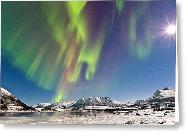Sortland Greeting Cards - Moon and Auroras Greeting Card by Frank Olsen
