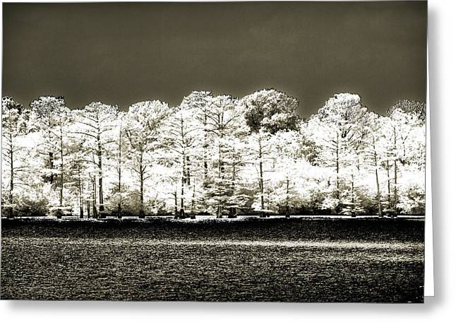 Infared Photography Greeting Cards - Moon Lake Morning Greeting Card by Barry Jones