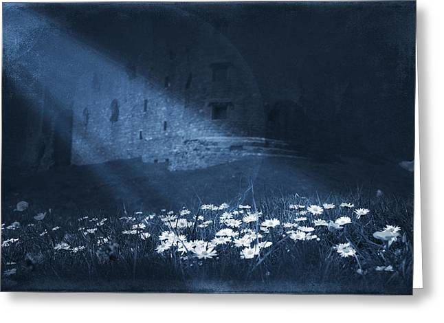 Frightening Castle Greeting Cards - Moon Light Daisies Greeting Card by Svetlana Sewell