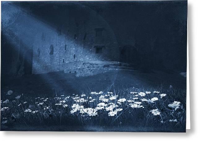 Vinatge Greeting Cards - Moon Light Daisies Greeting Card by Svetlana Sewell