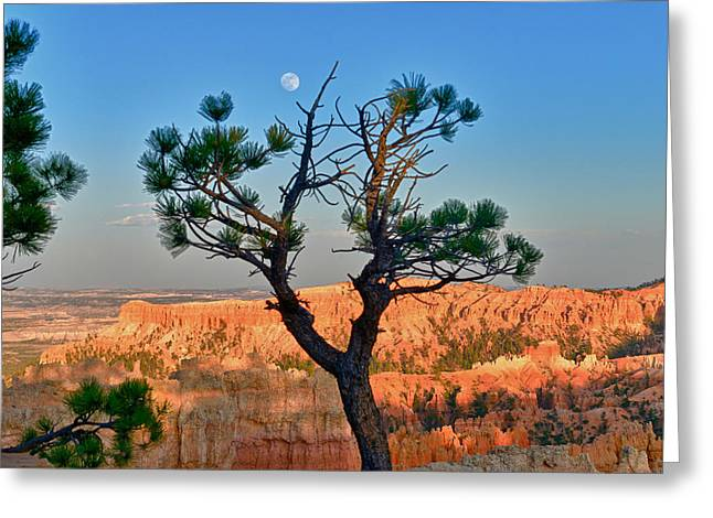 Moon Over Bryce Canyon Greeting Card by Greg Norrell