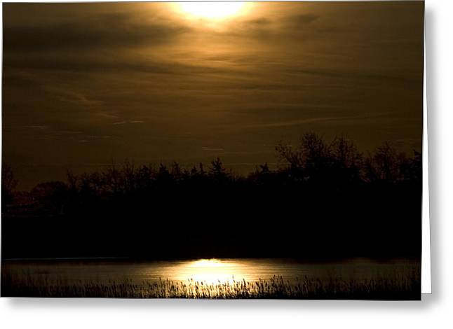 Moon Over the Pond Greeting Card by Tom Buchanan