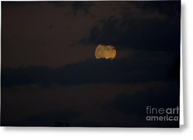Man In The Moon Greeting Cards - Moon Rising 04 Greeting Card by Thomas Woolworth