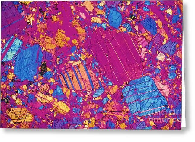 Light Micrography Greeting Cards - Moon Rock, Transmitted Light Micrograph Greeting Card by Michael W. Davidson - FSU