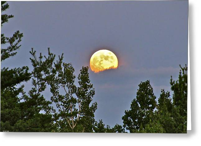 Best Sellers -  - A Summer Evening Greeting Cards - Moon Romance  Greeting Card by Debra     Vatalaro