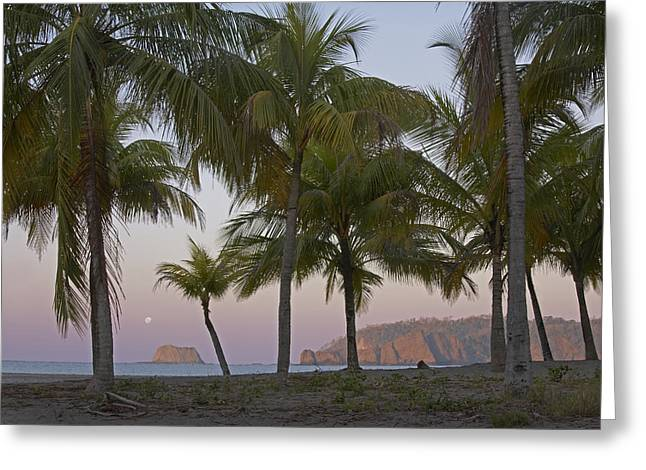 Moon Beach Greeting Cards - Moon Setting Playa Carillo Guanacaste Greeting Card by Tim Fitzharris