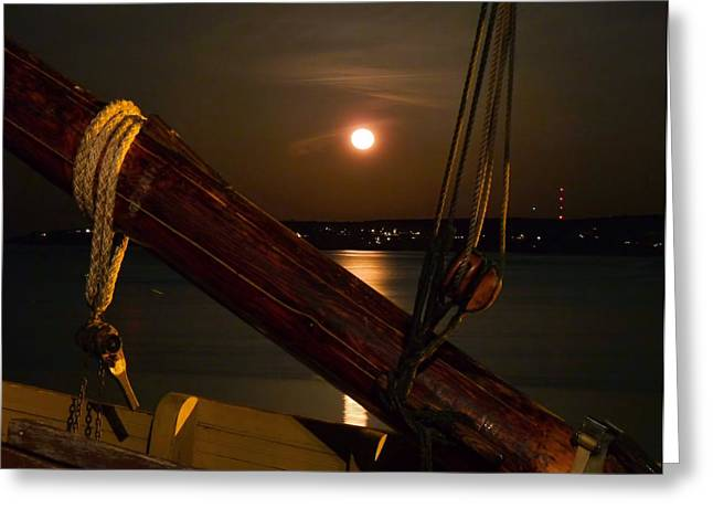 Moonrise Greeting Cards - Moon Shot Greeting Card by Janice Drew