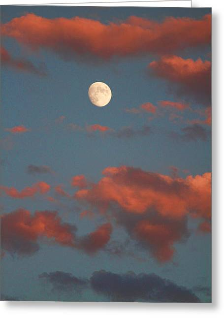 Art Galleries On Line Greeting Cards - Moon Sunset Vertical Image Greeting Card by James BO  Insogna