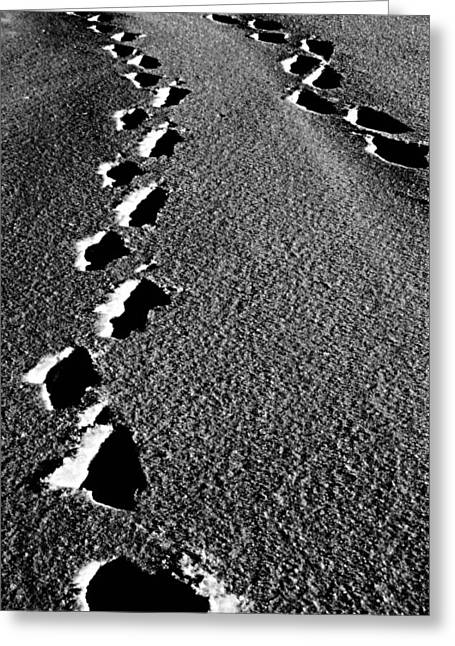Edmonton Photographer Greeting Cards - Moon Walk Greeting Card by Jerry Cordeiro