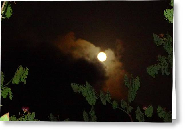 Ghostly Greeting Cards - Moon Watch Greeting Card by Xafira Mendonsa