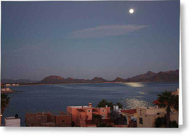 Moonlight Scene Greeting Cards - Moonlight over San Carlos Greeting Card by Brent Sisson