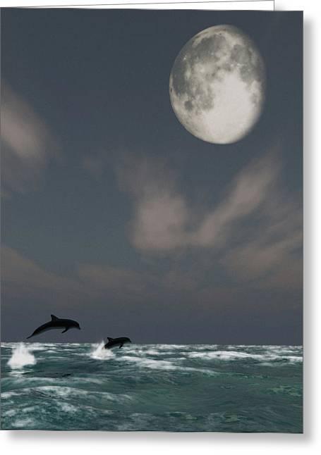 Ocean Images Digital Art Greeting Cards - Moonlight Swim Greeting Card by Richard Rizzo