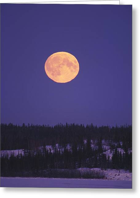 Northwest Territories Greeting Cards - Moonrise Over A Lake In The Winter Greeting Card by Paul Nicklen