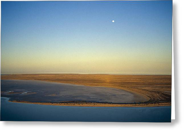 Occurrence Greeting Cards - Moonrise Over Lake Eyre In Flood Greeting Card by Jason Edwards