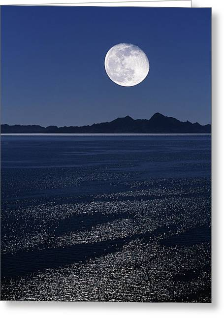 Sea Moon Full Moon Greeting Cards - Moonrise Over Sea Greeting Card by David Nunuk