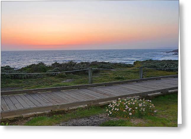 Moonstone Beach Greeting Cards - Moonstone Beach Boardwalk Greeting Card by Lynn Bauer