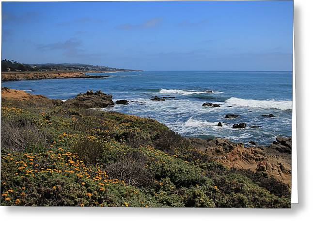Cambria Greeting Cards - Moonstone Beach Greeting Card by Heidi Smith
