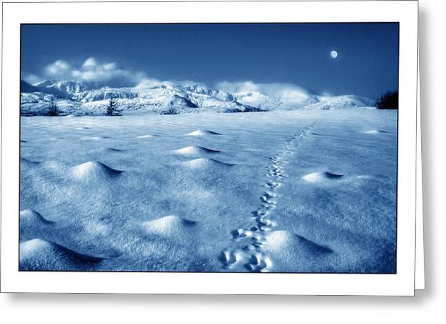 Winter Prints Greeting Cards - Moonwalk Greeting Card by Mal Bray