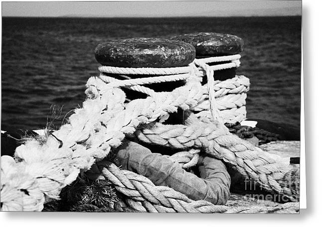 Bollard Greeting Cards - Mooring Ropes On Old Metal Harbour Bollard Scotland Greeting Card by Joe Fox