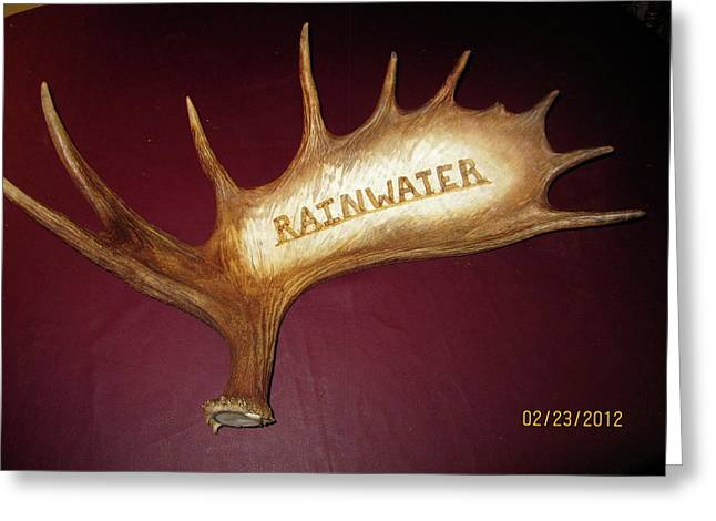 Horns Pyrography Greeting Cards - Moose Antler Plaque Greeting Card by Adam Owen