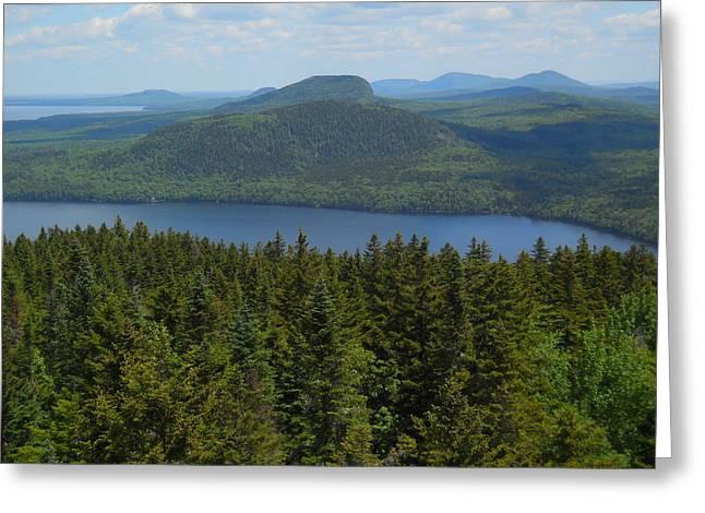 Jeff Moose Greeting Cards - Moosehead Lake Greeting Card by Jeff Moose