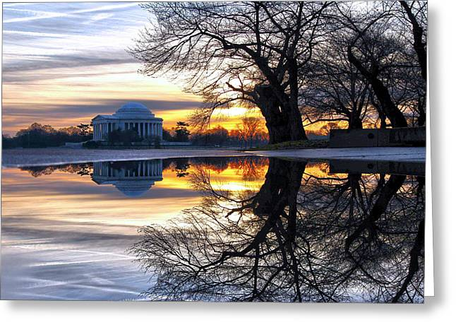 Jefferson Greeting Cards - More than Gold Greeting Card by Mitch Cat