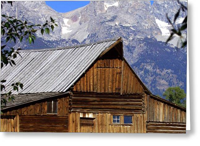Mormon Row Barn  1 Greeting Card by Marty Koch