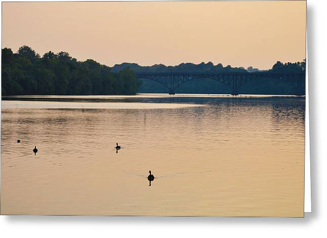 Morning Along the Schuylkill River Greeting Card by Bill Cannon