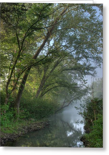 Crawford County Greeting Cards - Morning at Lee Creek Greeting Card by Terry Olsen