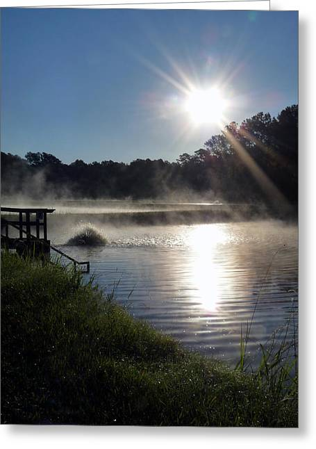 Morning At The Fish Hatchery Greeting Card by Terry Eve Tanner