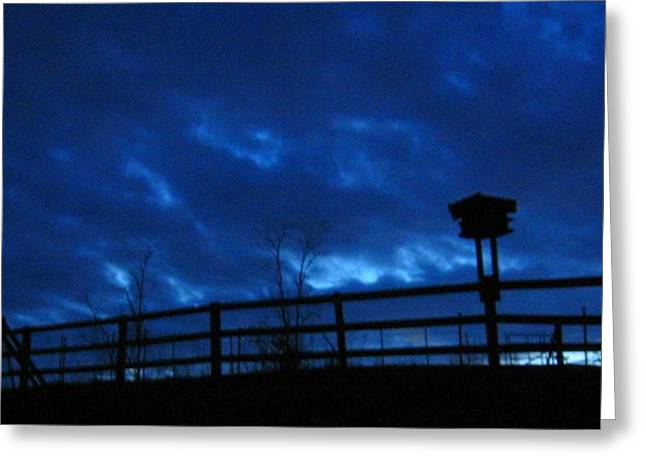 Morning Blues Greeting Card by Deb Martin-Webster