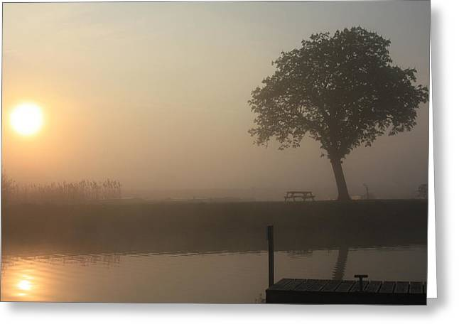 Morning Mist Images Greeting Cards - Morning calm Greeting Card by Linsey Williams