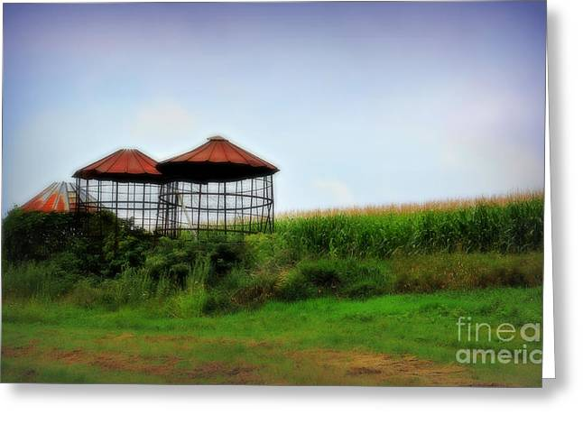 Silo Pyrography Greeting Cards - Morning Corn Greeting Card by Perry Webster