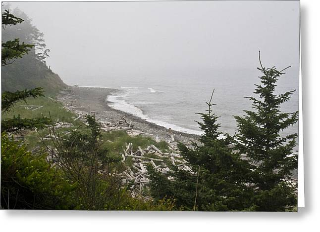 Whidbey Island Wa Greeting Cards - Morning Fog Greeting Card by Tracie Skiles